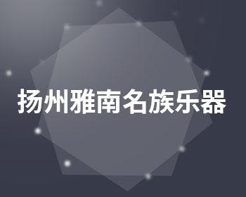 扬州雅南名族乐器